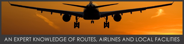 Banner_Plane_Grey